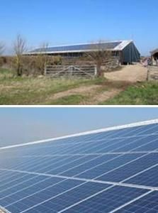 Potato Producers Turn to Solar Energy with help from PepsiCo UK
