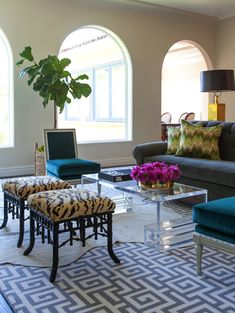 lucite coffee table, Asian inspired stools with animal print, blue sectional, fig plant