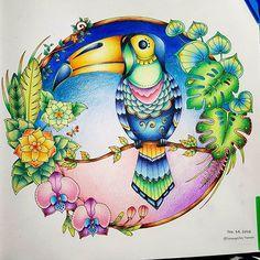⛦2016. 9. 28. . . 매지컬정글 ; Magical Jungle [ No.15] 컬러링 도구는 태그를 참고하세요. ➡ The finished painting☺ ➡ Colored pencil, see the tag. ➡ Backgroud ; Prisma Color Pencil . . . #마법의정글 #매지컬정글 #MagicalJungle  #컬러링북 #ColoringBook #조해너배스포드 @JohannaBasford  #출판사클 #KoreanVersion  #ColoringArt #coluring #adultcoloringbook #adultcoloring #mycreativeescape #jardimsecreto #카렌다쉬파블로 #Carandache #Pablo #ColorPencil #CarandachePabloColorPencil  #프리즈마 #Prisma #ColorPencil #책스타그램 #취미#일상 #힐링 #Healing