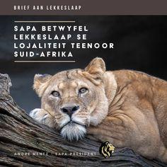 Toerisme verskaf werk aan gemeenskappe op verskeie vlakke en voorsien sodoende voedsel aan menige huishoudings in Suid-Afrika. Ondernemings soos LekkeSlaap het hul bestaan grotendeels te danke aan die unieke produkte wat deur wildsboere geskep is. SAPA betreur LekkeSlaap se onlangse besluit om teen die wettige wildsbedryf en avontuur toerisme te diskrimineer. _________________ Tourism is a job creator on foot sole level, responsible for bread on the table in many households in South Africa… South Africa, No Response, Tourism, Lion, Wildlife, Rest, Households, Lettering, Animals