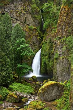 Wahclella Falls Spring Columbia River Gorge, Oregon by Zack Schnepf Photography