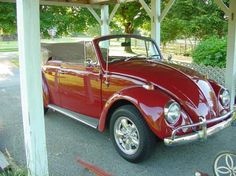 1967 VW Bug Convertible.  Love!!