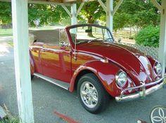 1967 VW Bug Convertible