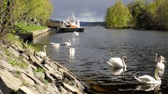 rigmor2048 Oslo, Fjord, River, Outdoor, Outdoors, Outdoor Games, The Great Outdoors, Rivers