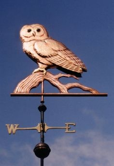 Spotted Owl Weather Vane by West Coast Weather Vanes. we have used gold leaf on this weathervane to create the distinctive markings for which this bird is . West Coast Weather, Spotted Owl, Lightning Rod, Weather Vanes, Owl Always Love You, Owl Bird, Night Owl, Beautiful Birds, Folk Art