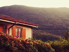 Mountain shelter by Life Morning Photography on Creative Market