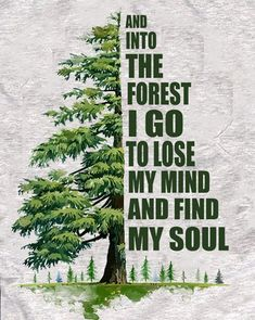 And into the forest I go to lose my mind & find my soul. Sign Quotes, True Quotes, Mood Quotes, Warrior Goddess Training, Soul Tattoo, Tattoo Ink, John Muir Quotes, Forest Tattoos, Spiritual Words