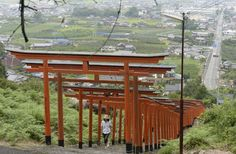 Red torii gates line the approach to Ukiha-Inarijinja shrine in Ukiha, Fukuoka Prefecture.