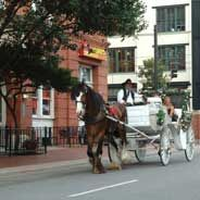 Top 100 Fun Things To See & Do In The Dallas Fort Worth Area