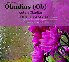 Bíblia Sagrada e seus livros: OBADIAS  - Autor e Data (Ob)