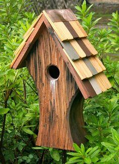 Bird house!