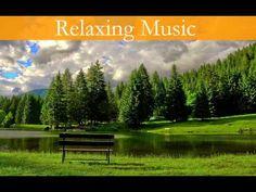 Relaxing Music,Music To Sleep,Meditation,Yoga,Spa☯