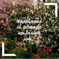 Babi a Fi: 5 Inspirational Quotes