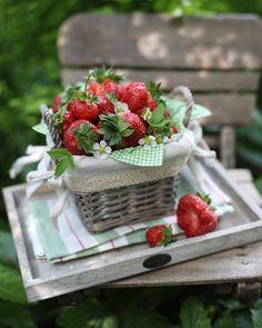 Strawberry Farm, Strawberry Picking, Strawberry Patch, Strawberry Shortcake, Raindrops And Roses, Strawberry Fields Forever, Wild Strawberries, Strawberries Garden, Love Garden