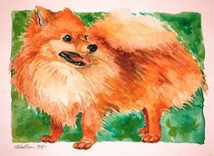 """""""Pomeranian Pup on the Lawn""""  (12""""X16"""", Watercolor, $150)  Pomeranians are some of the cutest dogs around, but rather high-strung. I imagine..."""