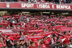 Benfica accused of serious corruption… and hiring a witch doctor