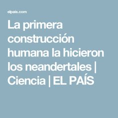 La primera construcción humana la hicieron los neandertales   Ciencia   EL PAÍS