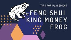 Three Legged Toad Feng Shui - Feng Shui Three Legged Money Toad Uses And...