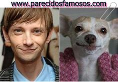 Parecidos con famosos: DJ Qualls con Chihuahua