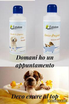 Ciao io sonoTob🐕 per il mio appuntamento di bellezza e del pulito ho scelto i prodotti 🌿Estoton🌿 gli esperti del pulito 💯.. Detergenti per la pulizia e cura dei nostri amici a 4 zampe:  ✅Shampoo per #cani  €10 ✅Balsamo nutriente amico prezioso€10  Scegli anche tu i detergenti🌿Estoton🌿, coccola i tuoi cuccioli con prodotti di qualita' 🔝, made in Italy 😉  #detergente #animallover