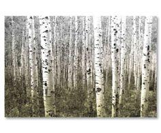 Kunstdruck Aspen Highlands, 76 x 114 cm