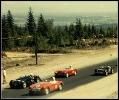 18 Color Vintage Snapshots Documented Westwood Motorsport Racing in the Early Days