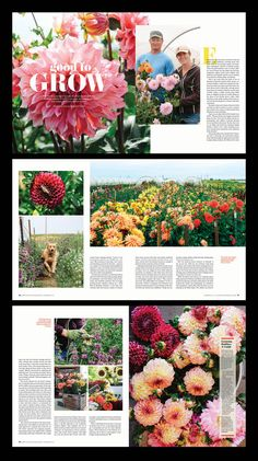 In the Garden Hymn . In the Garden Hymn . fort Collins Magazine Feature Layout Design by Shelleylai Food Magazine Layout, Magazine Page Layouts, Magazine Layout Design, Newspaper Design Layout, Page Layout Design, Brochure Layout, Brochure Design, Corporate Brochure, Corporate Design
