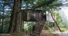 The Tree House - Boronda at the Post Ranch Inn  (Big Sur)
