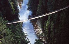 Grouse Mountain and Capilano Suspension Bridge Tour. Vancouver, Canada