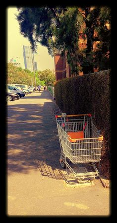 Abandoned Shopping Trolley 11