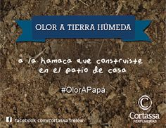 OLOR A TIERRA HÚMEDA