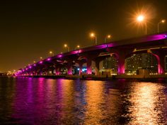 fotos de la bahia de miami de noche | ... de Miami, cuenta con luces color púrpura que reflejan las aguas de la