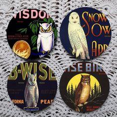 Vintage Owls  Fruit Crate Label Mousepad Coaster set coasters by Polkadotdog