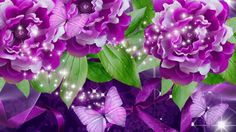 Rose Wallpaper, All Things Purple, Hd Desktop, Pink Roses, Butterfly, Plants, Floral Backgrounds, Passion, Wallpapers
