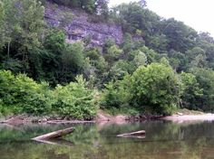 The Elk River Float Trips and Canoe Outfitters at Noel and Pineville, MO