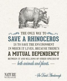 only way to save a rhinoceros is to save the environment in which it lives, because there's a mutual dependency between it and millions of other species of both animals and plants. Save Planet Earth, Save Our Earth, Save The Planet, Save The Rhino, Stop Animal Cruelty, Animal Protection, Wildlife Conservation, Nature Quotes, Quotes Quotes