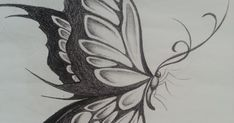 drawing butterfly easy side pencil drawings outline cool sketch colouringmermaid monarch wings fish tattoo artistic