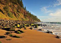 Scenery in Norfolk Island....