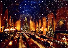 When you saw the Great Hall decorated for the holidays and you longed to be at Hogwarts so badly.