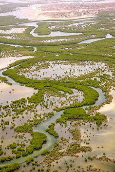 Le Delta du Saloum du Sénégal inscrit sur la Liste du patrimoine mondial de l'UNESCO. Vue aérienne de la mangrove - Copyright : © Jean Goepp, Oceanium de Dakar URL : whc.unesco.org/fr/documents/115095