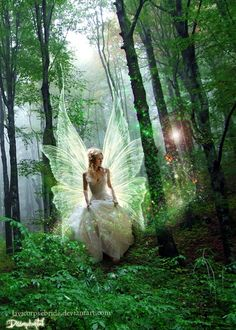 A Fairy Princess in the green, green forest. My fantasy. Fantasy Magic, Fantasy World, Fantasy Art, Fairy Dust, Fairy Land, Fairy Tales, Forest Fairy, Magical Forest, Woodland Fairy