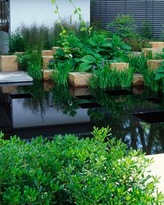 By Andy Sturgeon  chelsea flower show 2005  gold medal award  Since 1988 Andy Sturgeon Landscape and Garden Design has been dedicated to creating dynamic external spaces for private, commercial, and international clients.   via Peter James