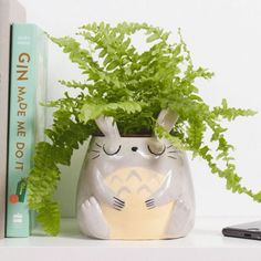 My Neighbor Totoro Planter - Petersilie Diy Clay, Clay Crafts, Studio Ghibli, Mini Vasos, Clay Art Projects, Cute Room Decor, Cute Clay, My Neighbor Totoro, Aesthetic Room Decor