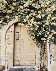 Lovely door ✨✨