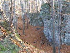 Dobogókő m) közelében is, attól délre a Zsivány-sziklák Budapest Hungary, Nature, Naturaleza, Outdoors, Natural, Mother Nature, Scenery