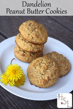 Harvest and use some dandelion petals for their honey-like flavor in a tasty and slightly nutritious Dandelion Peanut Butter Cookies.