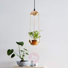 Exceptionel pendellampe Grow til udsmykning Golden Color, Kugel, Hanging Lights, Plant Hanger, Wind Chimes, Led Lamp, Light Bulb, Ceiling Lights, Lighting