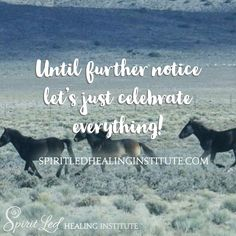 Until further notice let's just celebrate everything.