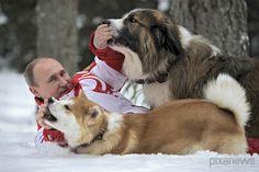 Putin and dogs