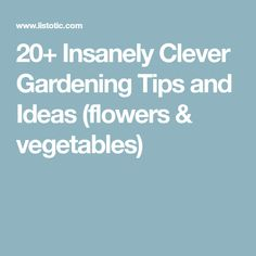 20+ Insanely Clever Gardening Tips and Ideas (flowers & vegetables)